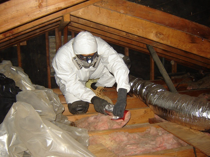 Mold Testing and Remediation